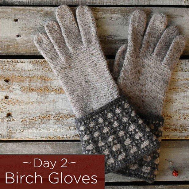 Birch Gloves Kit - Day 2