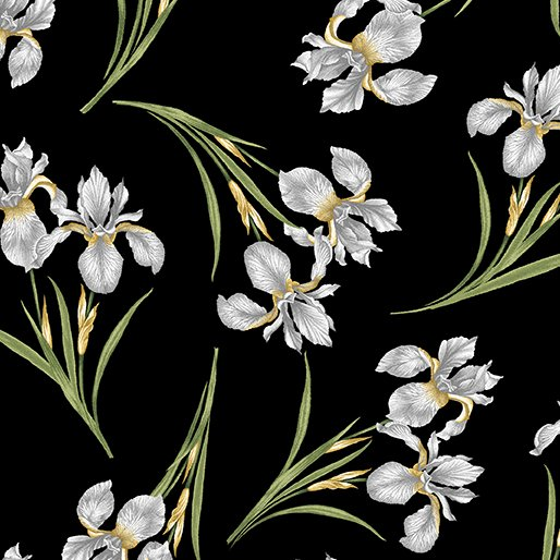 Magnificent Blooms Iris - Black/Multi- by Jackie Robinson from Benartex Fabrics