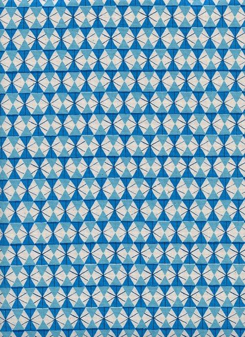 Welsummer - Chicken Wire - Bright Blue