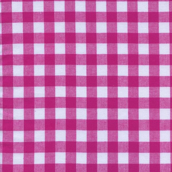 Checkers-1/2 Gingham-Berry