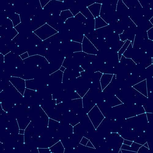 Otter Romp Constellation Navy