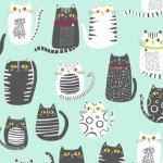 Cat Fish CATS AQUA