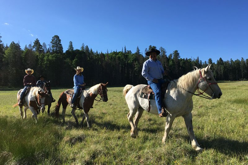 Horseback riding at White Mountain Adventures