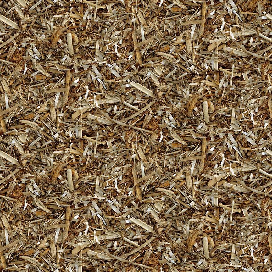 Northcott Naturescapes 21401-35 Tan Dried Grasses