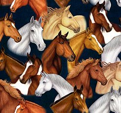 Quilting Treasures Mustang Sunset 26483-N Horse Heads Navy