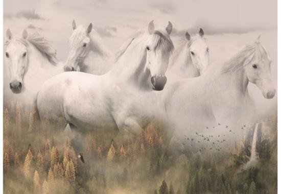 Hoffman Call of the Wild R4592-112  Spirit Horses Digital Panel Dawn