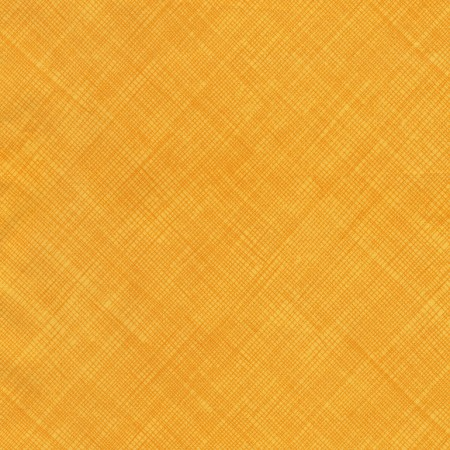 Timeless Treasures Hatch Texture M2959 Citrus  Row By Row 2017