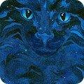 RoberRobert Kaufman Be Pawsitive18348-69 MIDNIGHT Cat Faces