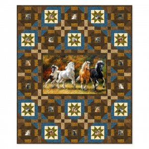 Pine Tree Country Quilts Spirited Stars PTN2104