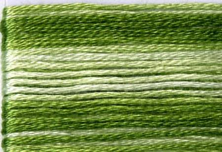 Seasons Embroidery Thread SE80-8021 GREEN VARIEGATED