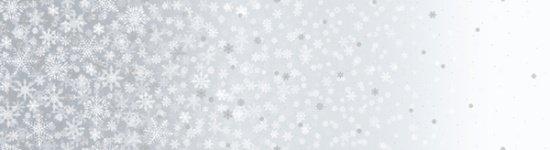 Snow Silver