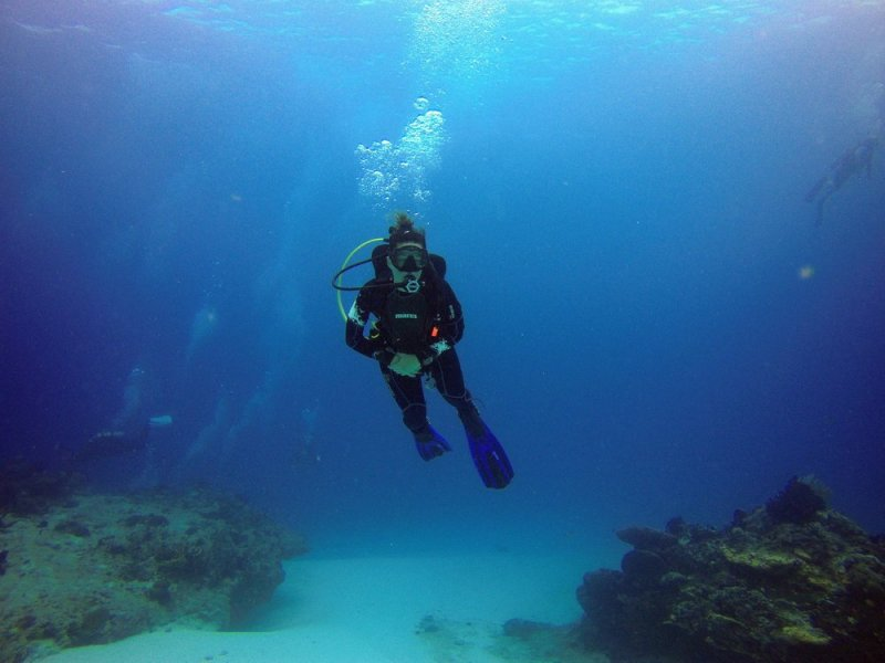 virginia scuba is northern virginia and manassas home for scuba