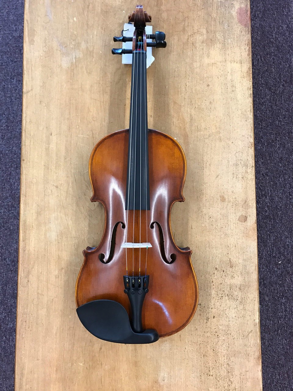 Andreas Eastman Violin VL305 Professional Outfit 4/4