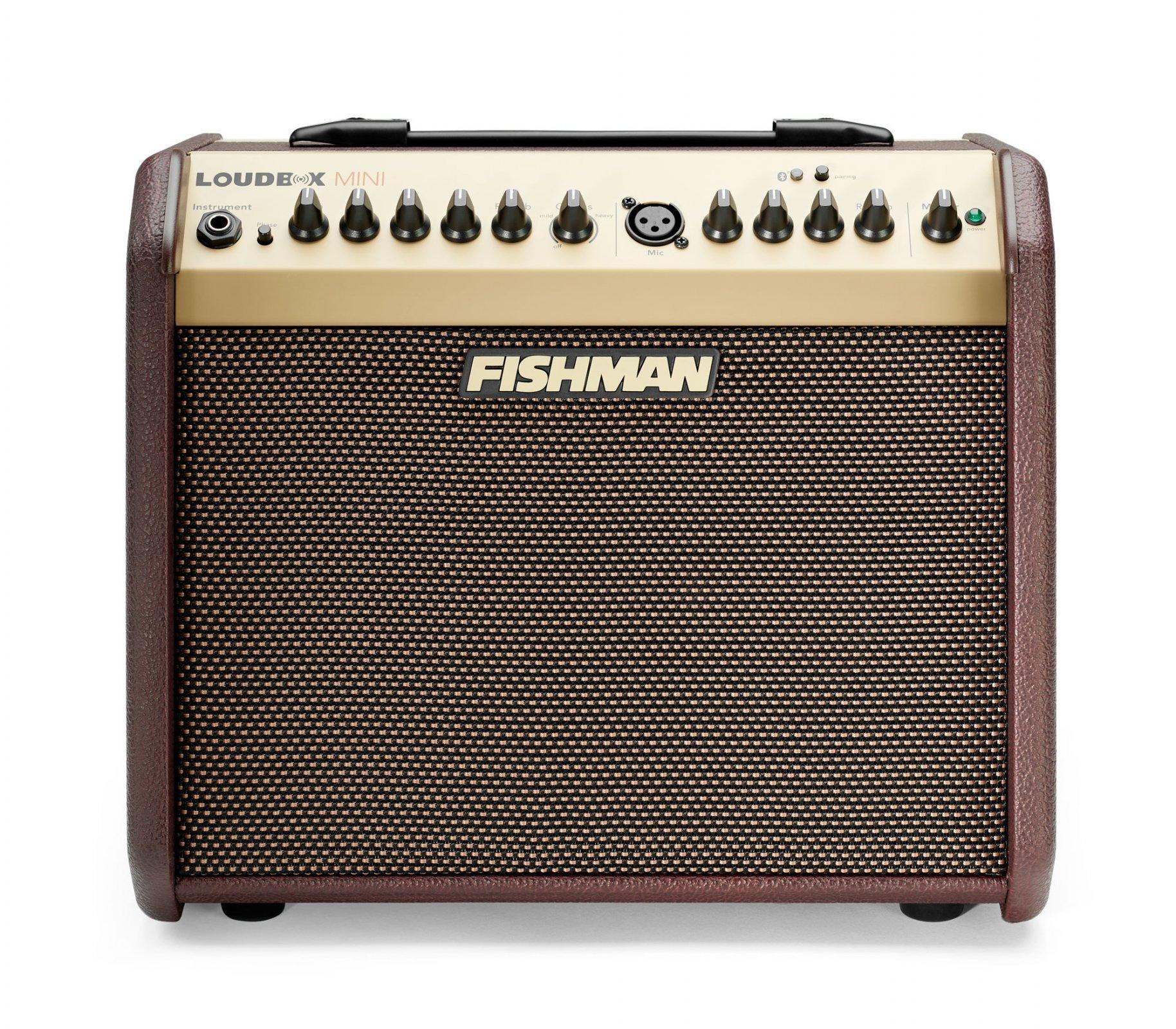 Fishman Loudbox Mini 60 Watt Amplifier - PRO-LBX-500 Without Bluetooth