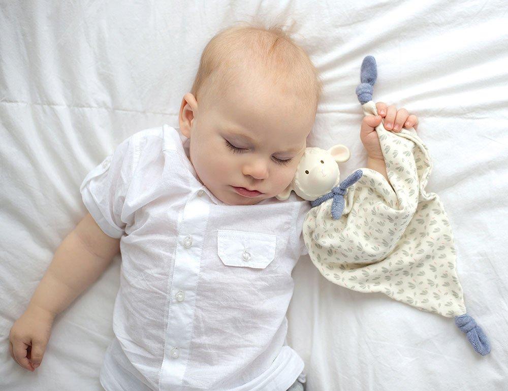 Lucas Lamb Comforter Blue