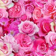 Digital Garden Roses - Pink