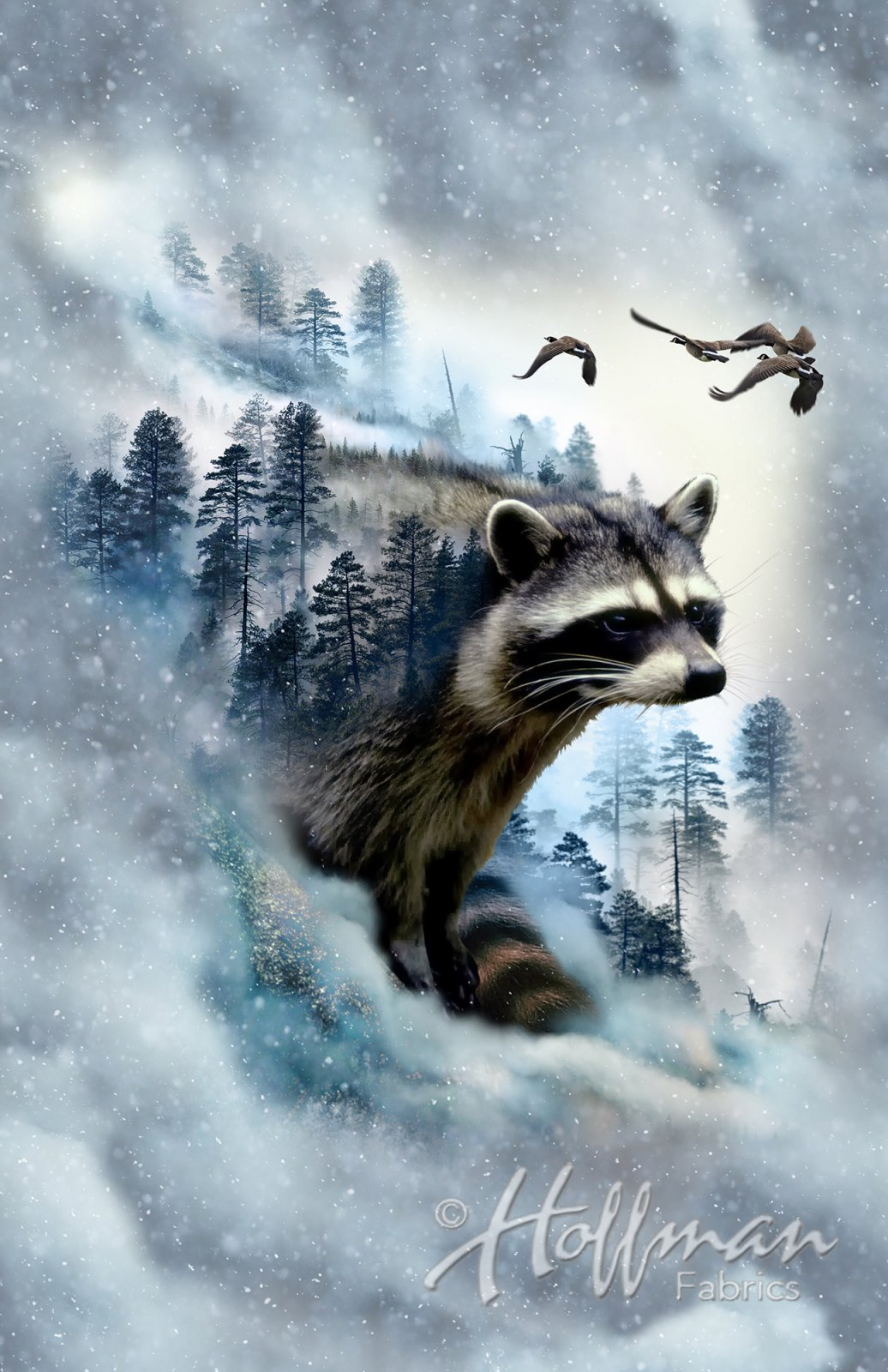 Call of the Wild - Racoon