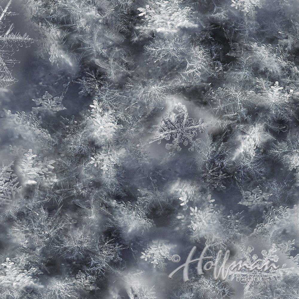 Call of the Wild - Snowflake Paynes Gray