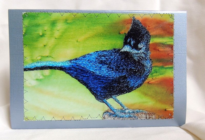 BLUE JAY STITCHED PHOTO ART CARDS