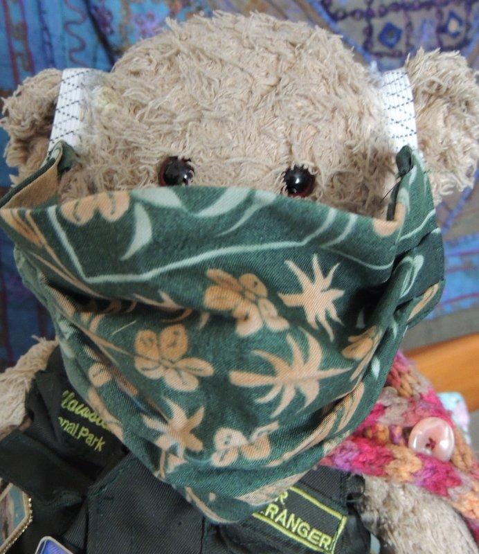 Bear wearing a mask