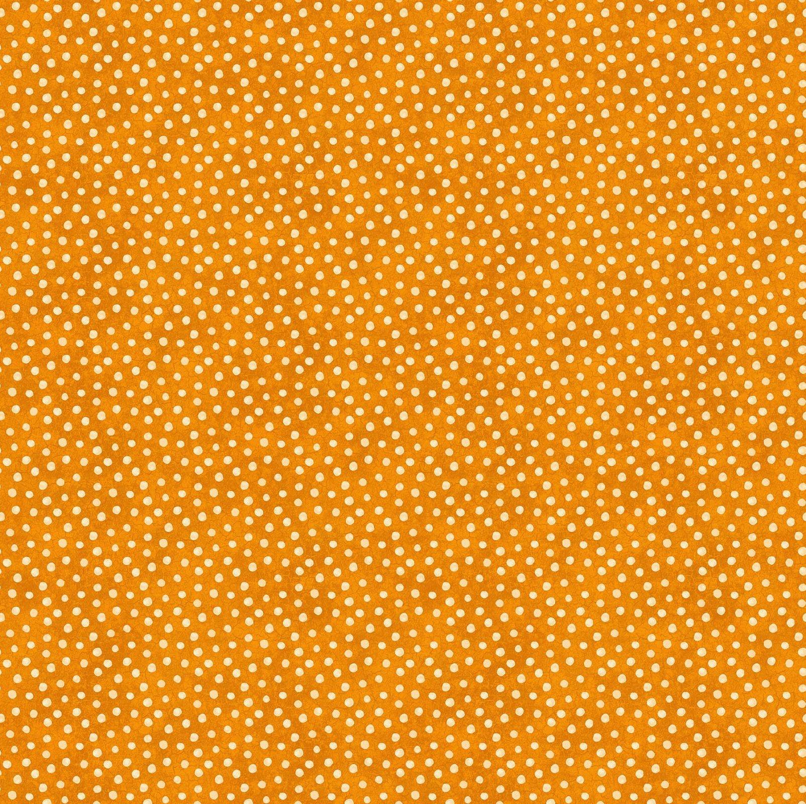 Black Cat Capers - Dots Orange