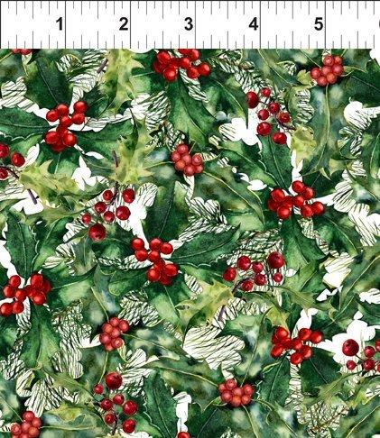 A Poinsettia Winter 5APW 1