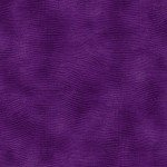 Equipoise Wide 118 - Purple