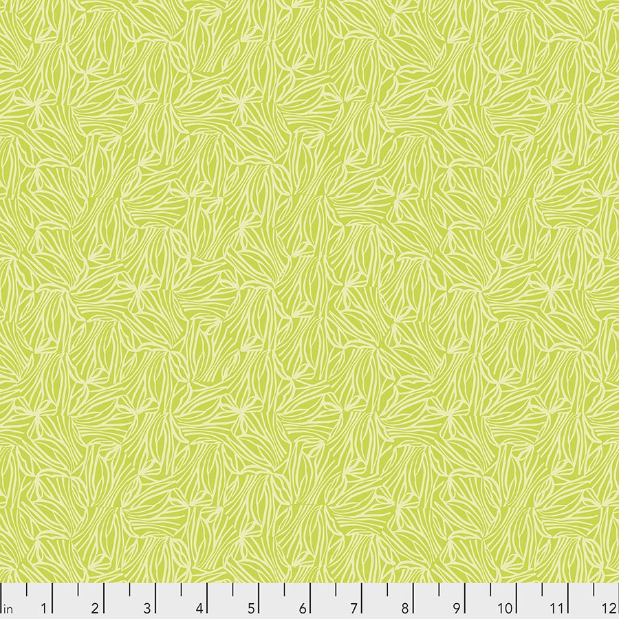 Hexis - Lime - PWVW004.LIME