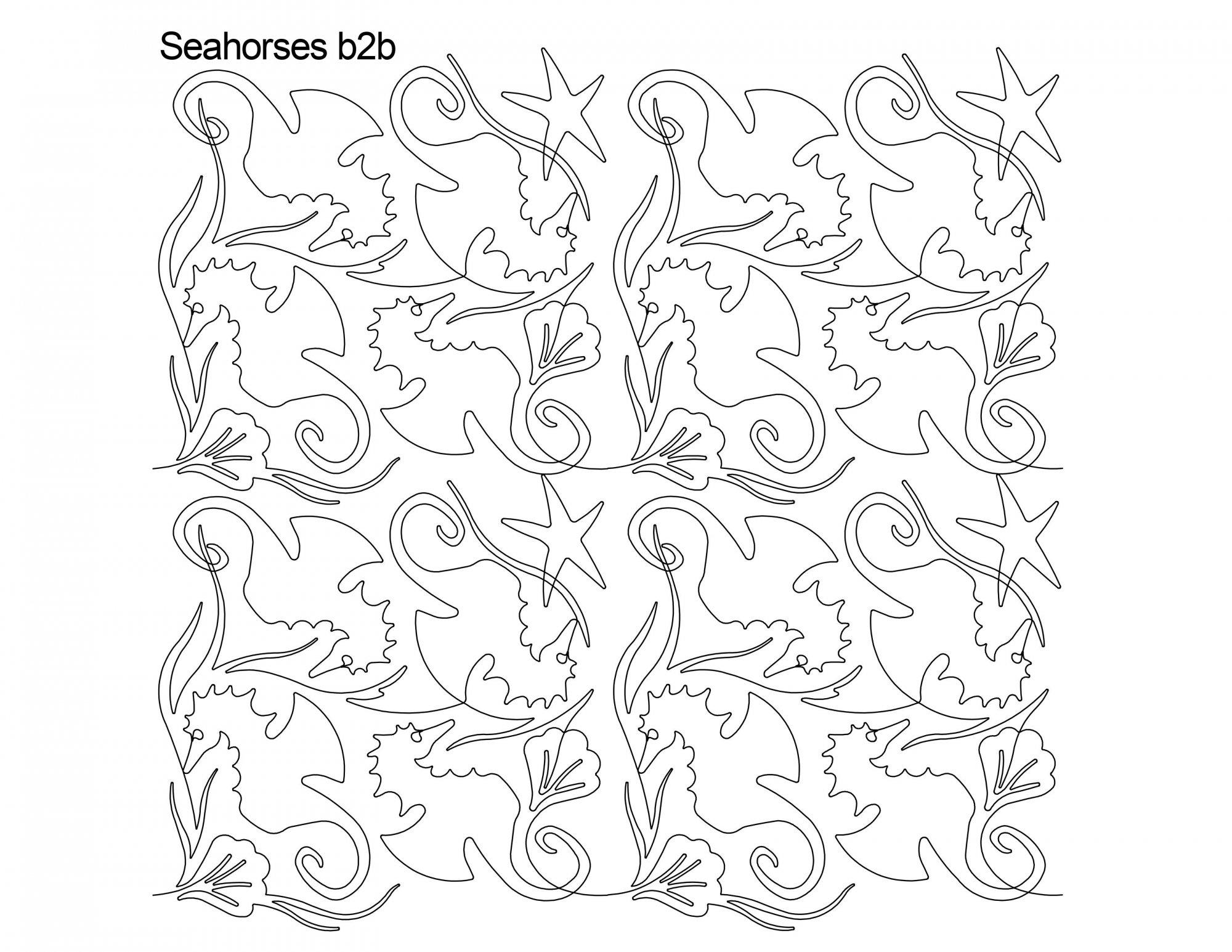 Sea Horses B2B