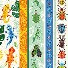 Beetlemania  CLTY2641-55