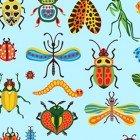 Beetlemania  CLTY2644-97