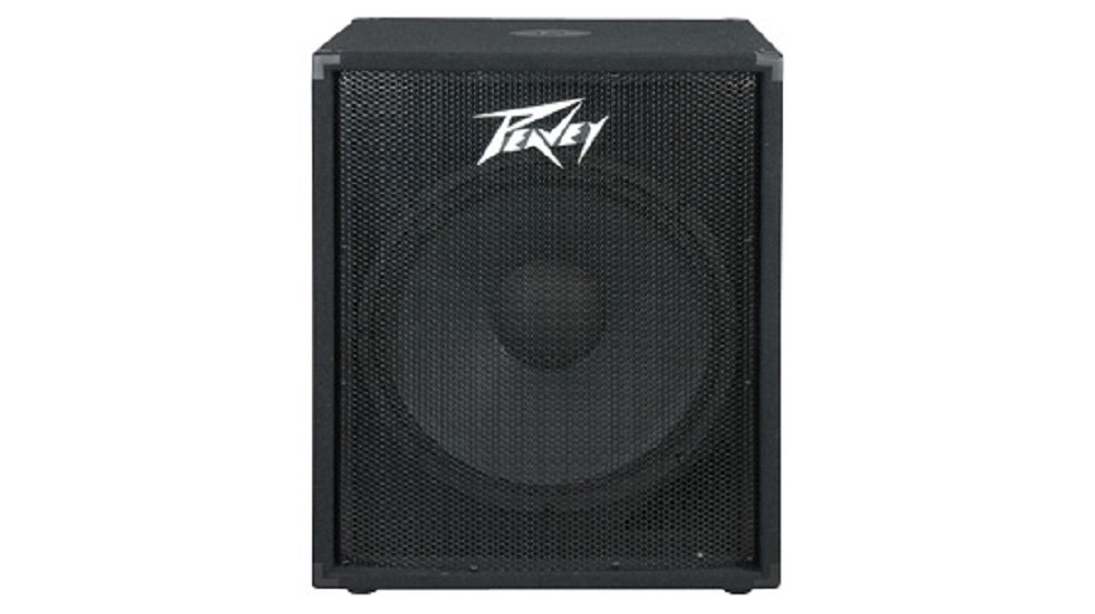 Peavey 00573840 PV118 400W 2-Way Speaker System