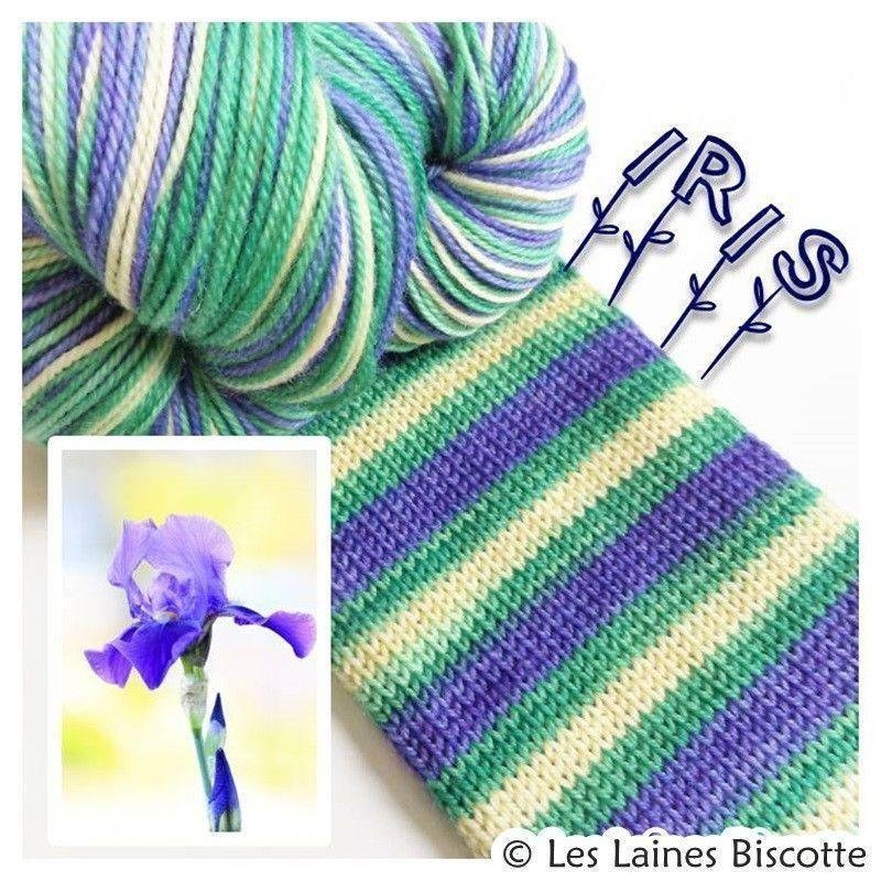Biscotte Yarns Bis-Sock Iris