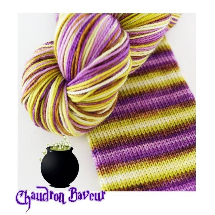Biscotte Yarn Bis-Sock  Leaky Cauldron