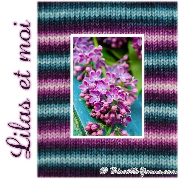 Biscotte Yarn Bis-Sock Lilas Et Moi 'Lilac'