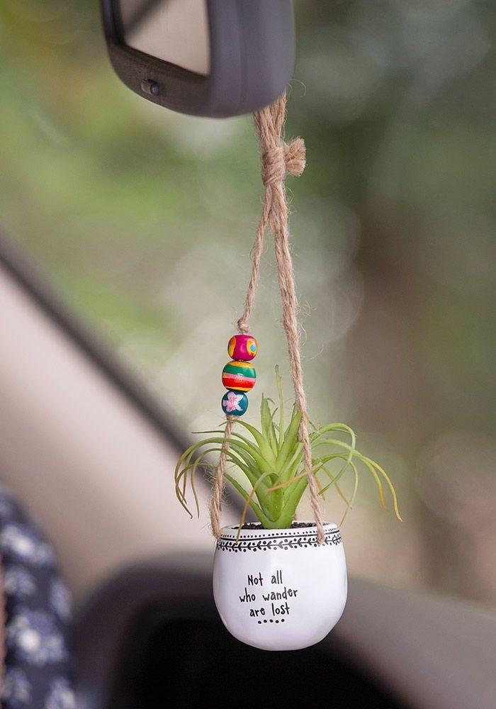 Natural Life mini succulent