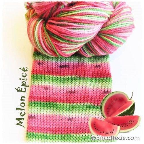 Biscotte Yarn Bis-Sock Watermelon