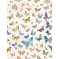 Butterfly Haven - Butterflies
