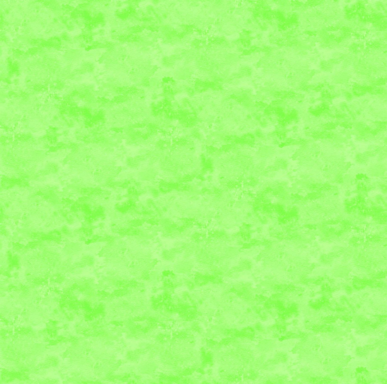 Toscana-Gecko