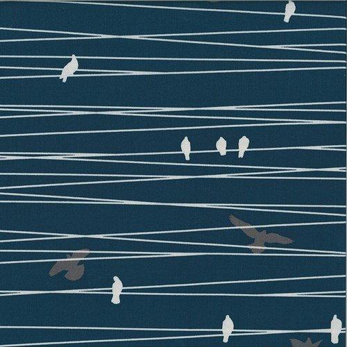 Hoffman Fabrics - Grafic - Navy - Birds on a Wire
