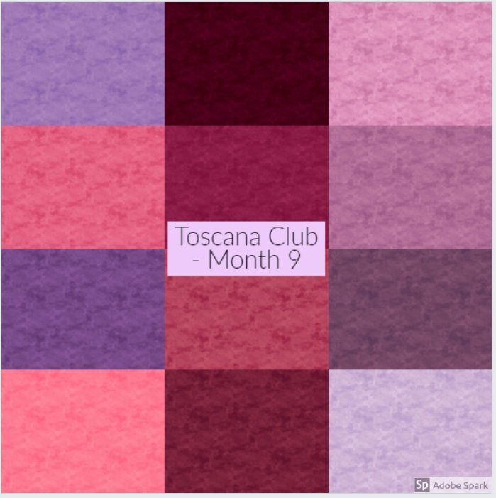 Toscana Club - 1/2 yd - Month 9