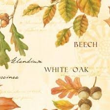 Fall Festival - Leaves w/ Words - Cream