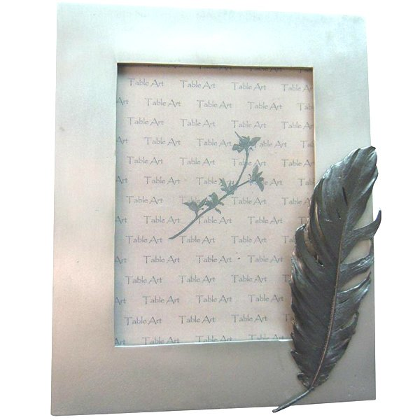 Silver Seasons Feather Frame