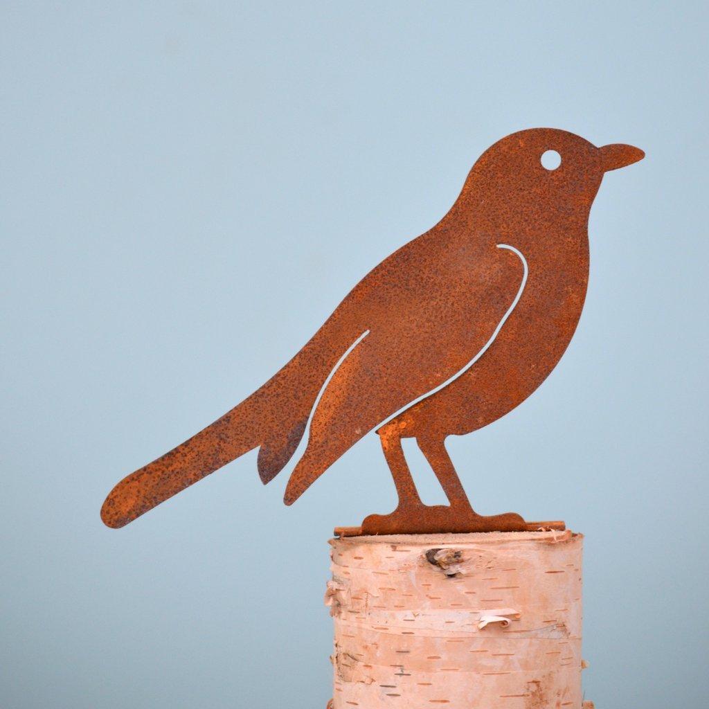 Robin Rusty Bird