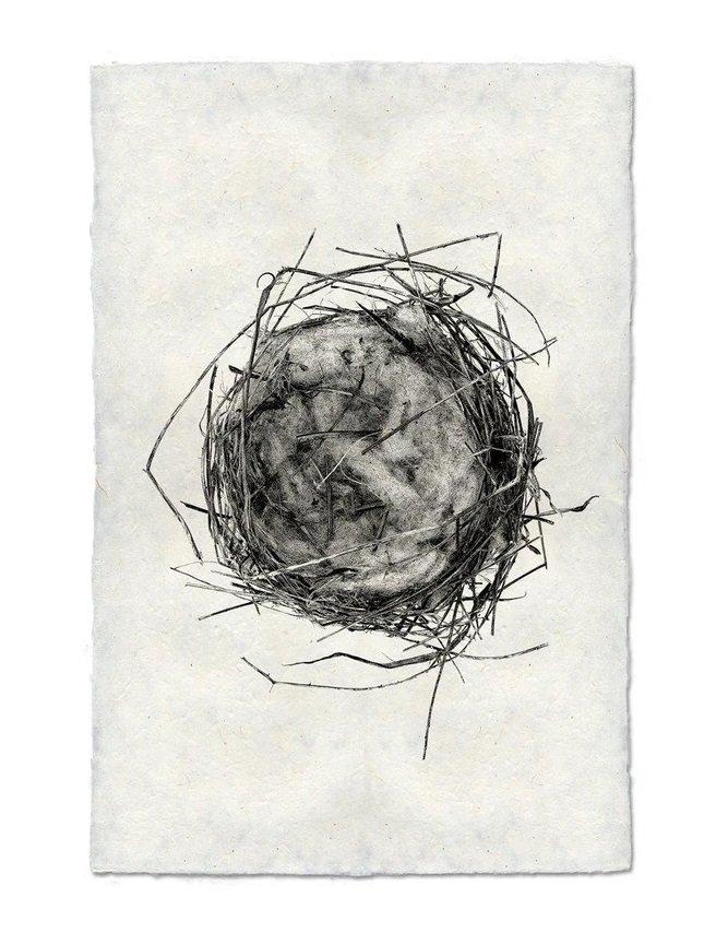 Nest Study #7 9x14 Print on Nepalese Paper
