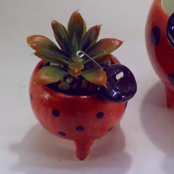 Lady Bug  Succulent Planter