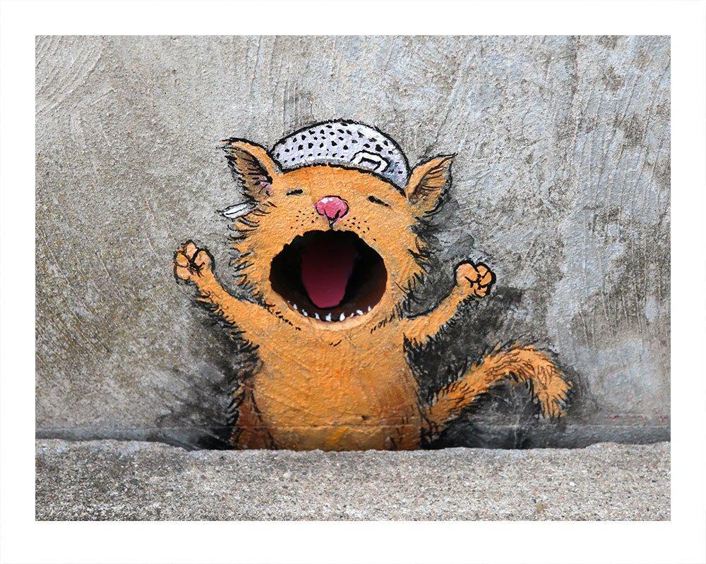 Colander Cat David Zinn Print
