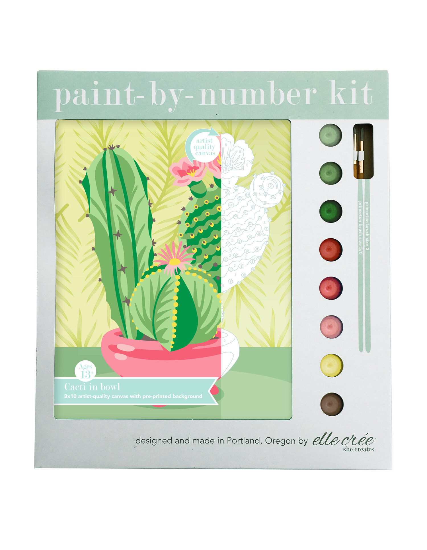 Cacti in Bowl Paint-By-Number Kit