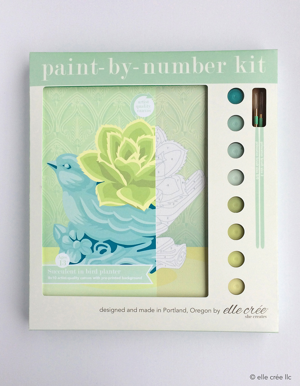 Succulent Bird Paint-By-Number Kit