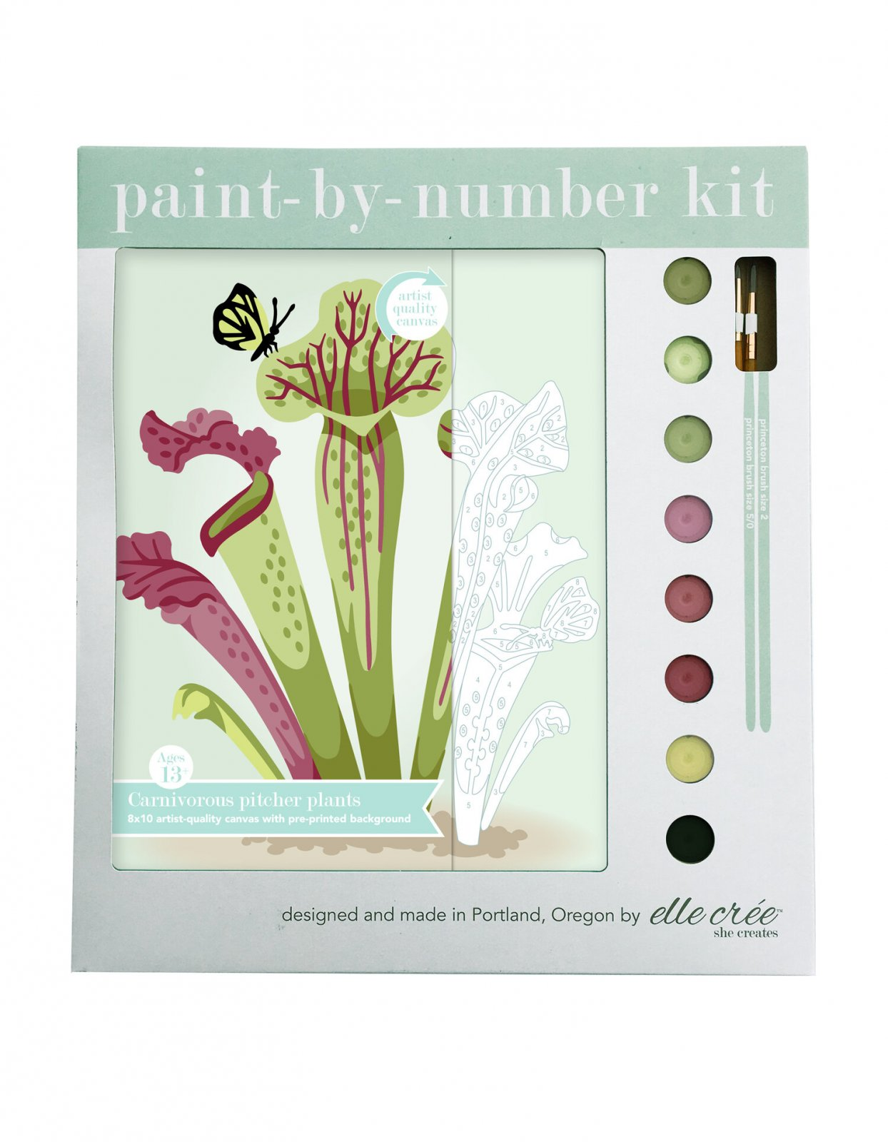 Pitcher Plants Paint-By-Number Kit
